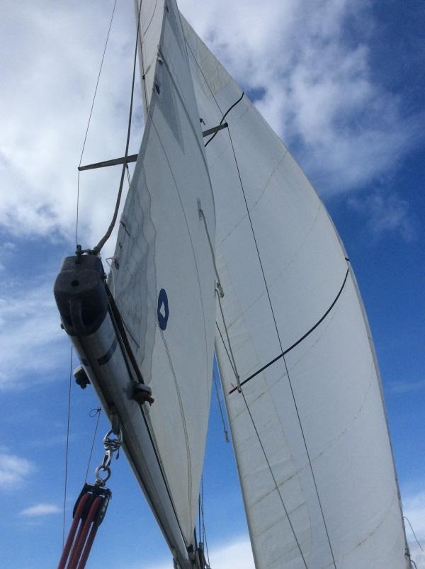 Die Maxi kann segeln